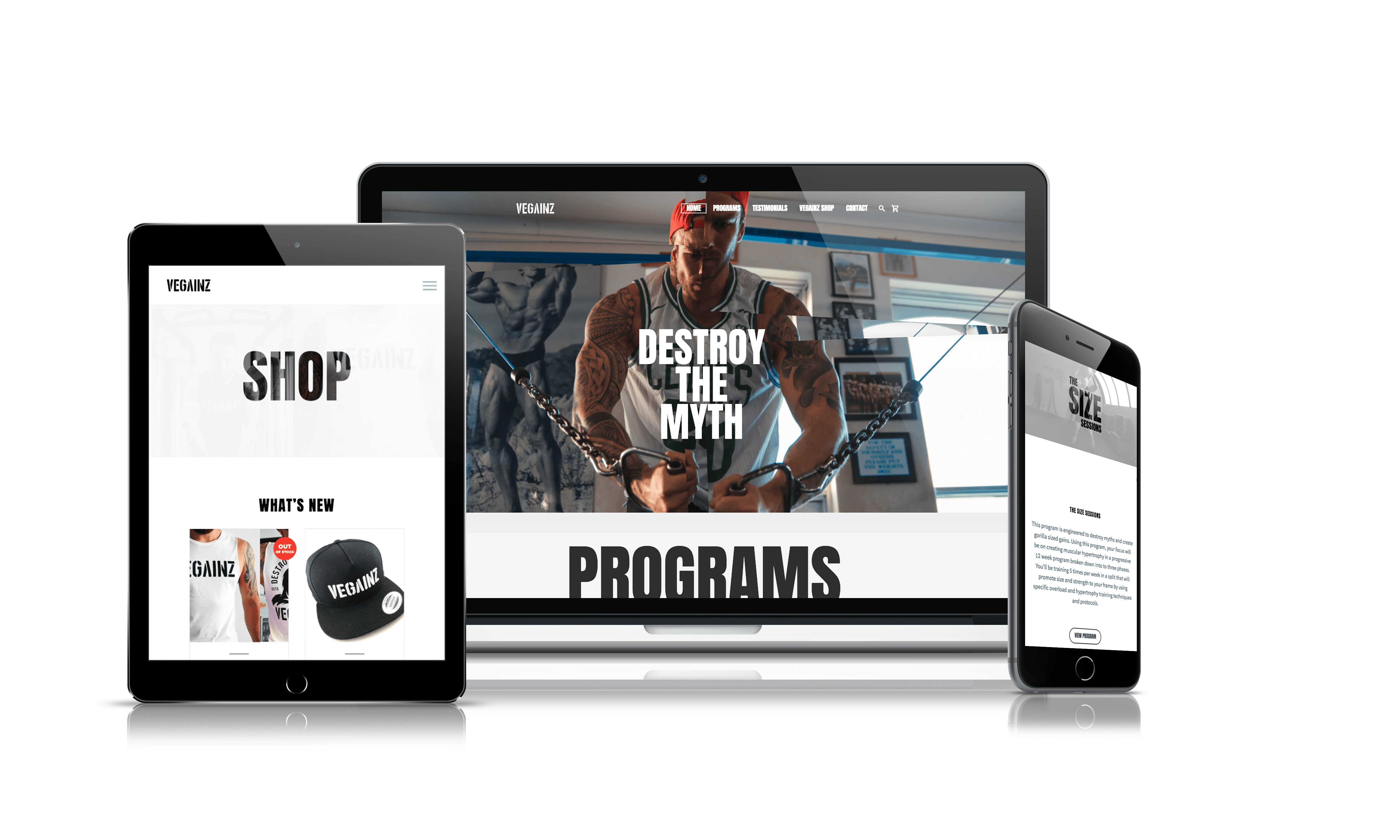 Vegainz coach website
